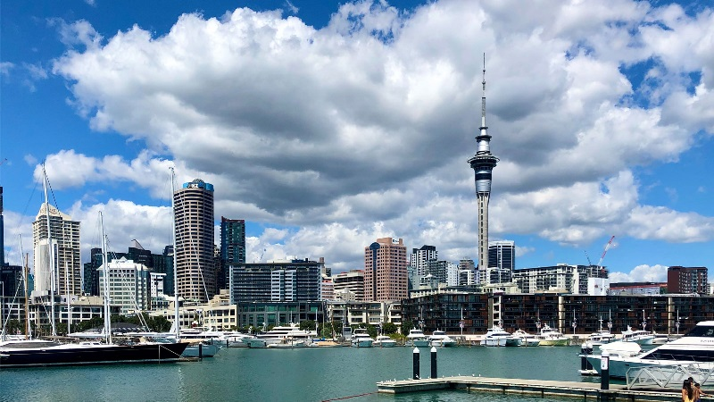 Westhaven marina in Auckland New Zealand